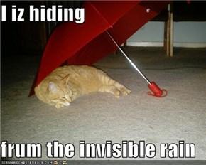 I iz hiding  frum the invisible rain