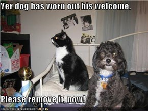 Yer dog has worn out his welcome.  Please remove it, now!