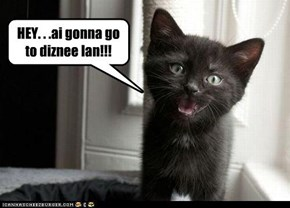 HEY. . .ai gonna go to diznee lan!!!