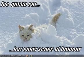 Ice-queen cat...  ...haz snow sense of humour