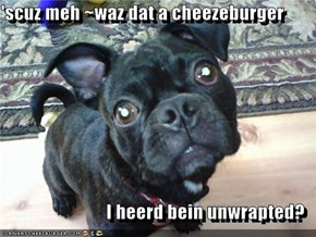 'scuz meh ~waz dat a cheezeburger  I heerd bein unwrapted?