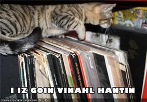Vinal Hantin