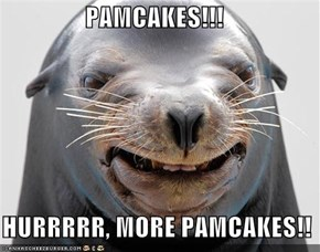 PAMCAKES!!!    HURRRRR, MORE PAMCAKES!!