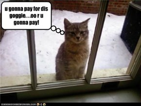 u gonna pay for dis goggie. . .oo r u gonna pay!