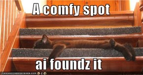 A comfy spot  ai foundz it