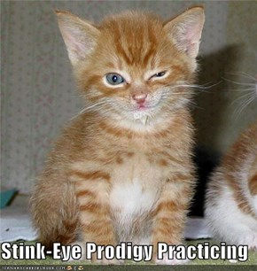 Stink-Eye Prodigy Practicing