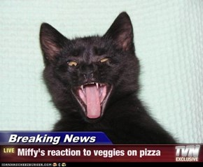 Breaking News - Miffy's reaction to veggies on pizza