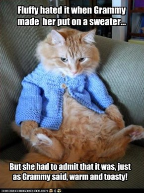 Fluffy hated it when Grammy made  her put on a sweater...
