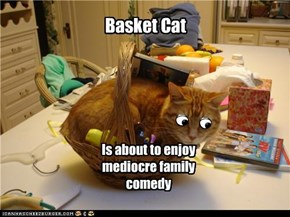 Basket cat