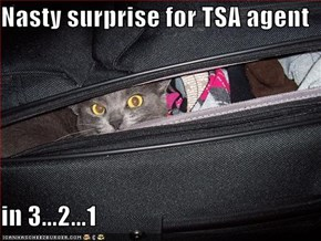 Nasty surprise for TSA agent  in 3...2...1