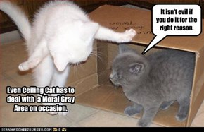 Even Ceiling Cat has to deal with  a Moral Gray  Area on occasion.