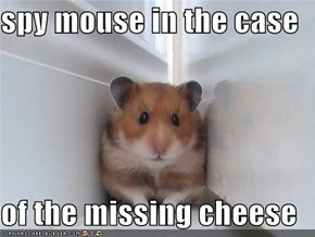 spy mouse in the case   of the missing cheese