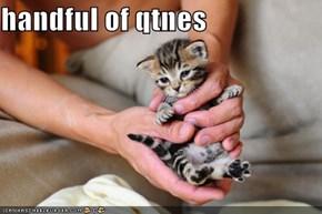 handful of qtnes