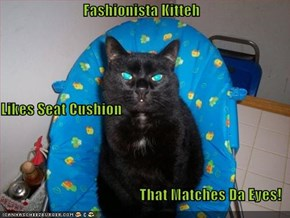Fashionista Kitteh Likes Seat Cushion That Matches Da Eyes!
