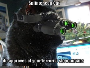 Splinter cell Cat  disapproves of your terrorist shenanigans