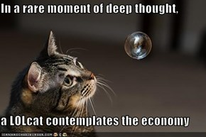 In a rare moment of deep thought,   a LOLcat contemplates the economy