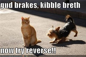 gud brakes, kibble breth  now try reverse!!