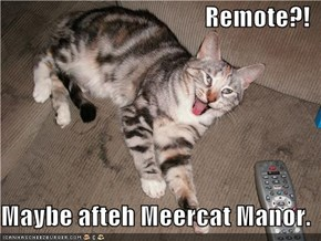 Remote?!  Maybe afteh Meercat Manor.