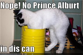 Nope! No Prince Alburt  in dis can