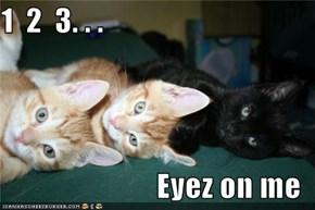 1  2  3. . .  Eyez on me