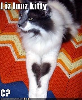 I iz luvz kitty  C?