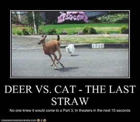 DEER VS. CAT - THE LAST STRAW