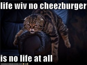 life wiv no cheezburger  is no life at all