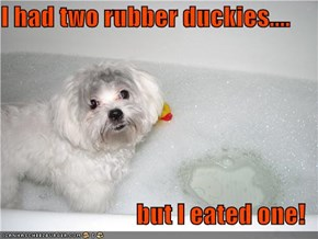 I had two rubber duckies....  but I eated one!