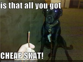 is that all you got  CHEAP SKAT!