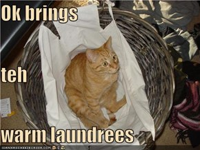 Ok brings teh warm laundrees