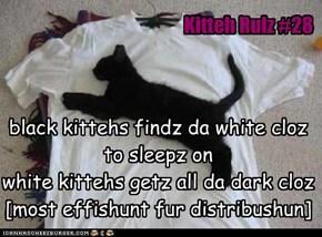 Kitteh Rulz #28