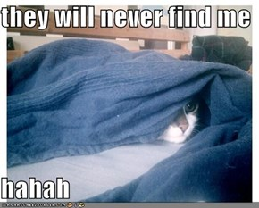 they will never find me  hahah