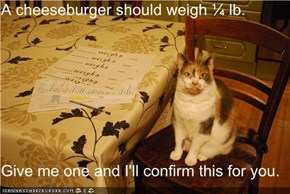 A cheeseburger should weigh ¼ lb.  Give me one and I'll confirm this for you.