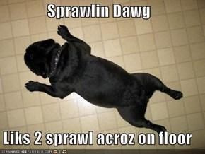 Sprawlin Dawg  Liks 2 sprawl acroz on floor