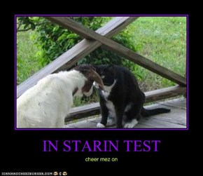 IN STARIN TEST