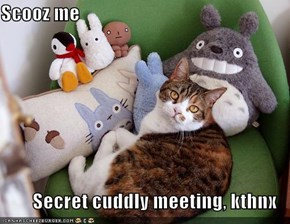 Scooz me  Secret cuddly meeting, kthnx