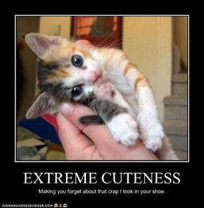 EXTREME CUTENESS