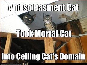 Into Ceiling Cat's Domain