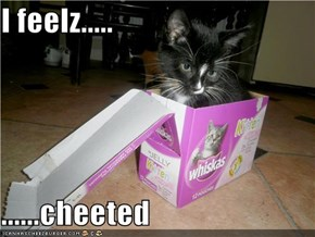 I feelz.....  ......cheeted