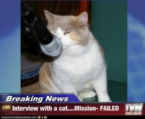 Breaking News - Interview with a cat....Mission- FAILED