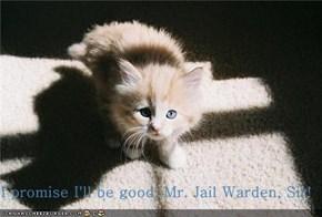I promise I'll be good, Mr. Jail Warden, Sir!