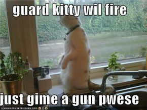 guard kitty wil fire  just gime a gun pwese