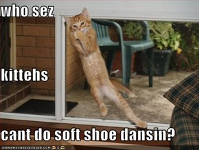 who sez kittehs cant do soft shoe dansin?
