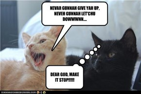 NEVAR GUNNAH GIVE YAH UP, NEVEH GUNNAH LET'CHU DOWWWNN....