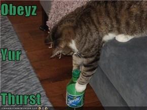 Obeyz Yur  Thurst