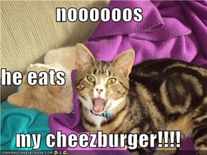 noooooos he eats my cheezburger!!!!