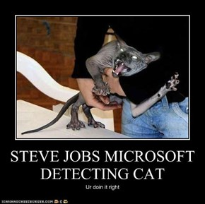 STEVE JOBS MICROSOFT DETECTING CAT