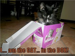 I.... am the CAT... in the BOX!
