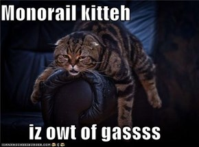 Monorail kitteh  iz owt of gassss