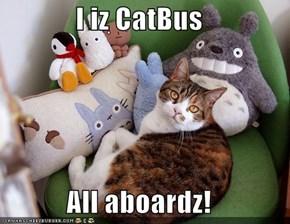 I iz CatBus  All aboardz!